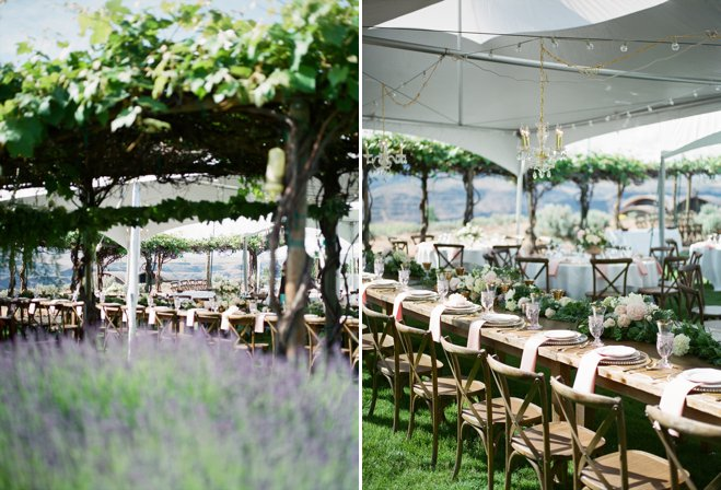 real_wedding_winery